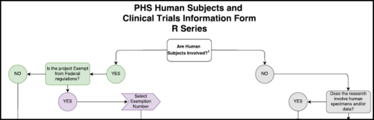 Top section of the flowchart in the PHS Human Subjects and Clinical Trials Information Form - R Series information guide