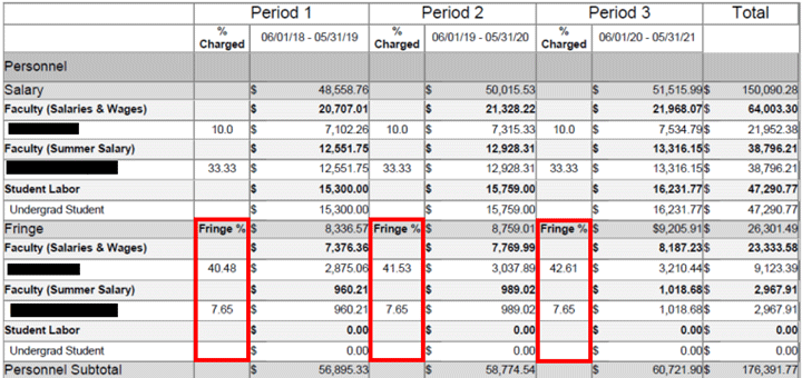 Fringe columns highlighted on a sample Budget Salary Total Report